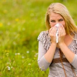 Alergiile sunt provocate, câteodată, și de acarieni sau mucegai