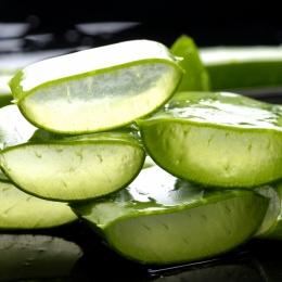 Super planta care întăreşte imunitatea