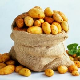Alegeţi cu mare atenţie cartofii!