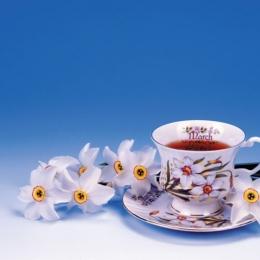 Ceaiul de narcise ajută la tratarea durerilor de piept