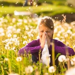 Alergia, boala omului modern. Primăvara se înteţesc reacţiile alergice