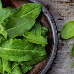 Măcrișul, planta miraculoasă pentru afecțiunile hepatice
