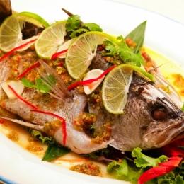 Îţi place peştele? Află care sunt cei mai indicaţi pentru sănătate, dar şi ce peşti sunt periculoşi sau toxici