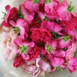 Apa de trandafiri, secretul frumuseții eterne
