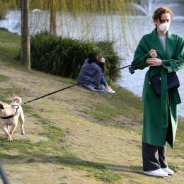 Plimbarea câinelui, un exercițiu fizic foarte bun