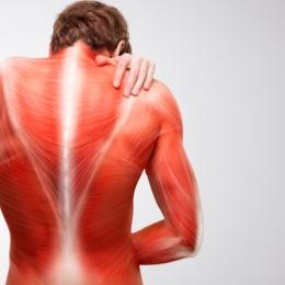 Polimialgia reumatică vă afectează puternic musculatura
