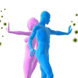 Secretele unui sistem imunitar de fier