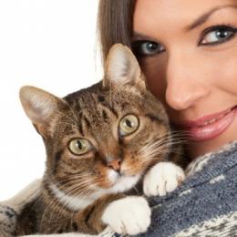De ce sunt pisicile