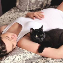 Toxoplasmoza în sarcină. Consecinţe şi metode de prevenţie