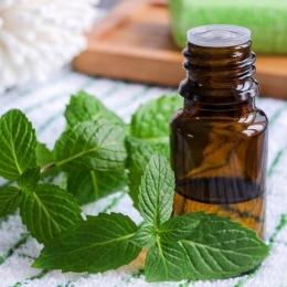 Uleiul de mentă, util în tratarea sindromului de colon iritabil