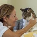 Pisicile au un impact terapeutic asupra oamenilor